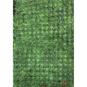Изкуствена трева Пано 60х40см Y-2126